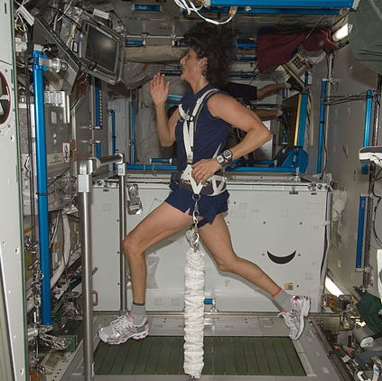 NASA astronaut Sunita Williams, Expedition 32 flight engineer, equipped with a bungee harness, exercises on the Combined Operational Load Bearing External Resistance Treadmill (COLBERT) in the Tranquility node of the International Space Station